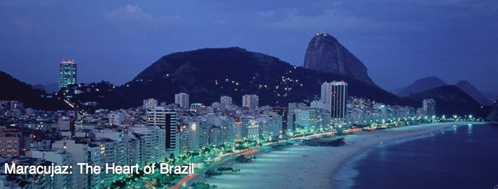 dvd-cropped-the-heart-of-brazil